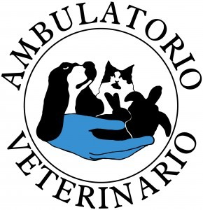 LOGO AMBULATORIO