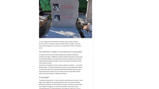 sanvalentino2019-baomiaovillge-giornale_di_como (FILEminimizer)
