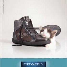 Pubblicità stonefly con gatto del bao miao village