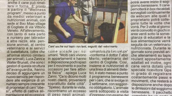 notiziario_2017_03_17